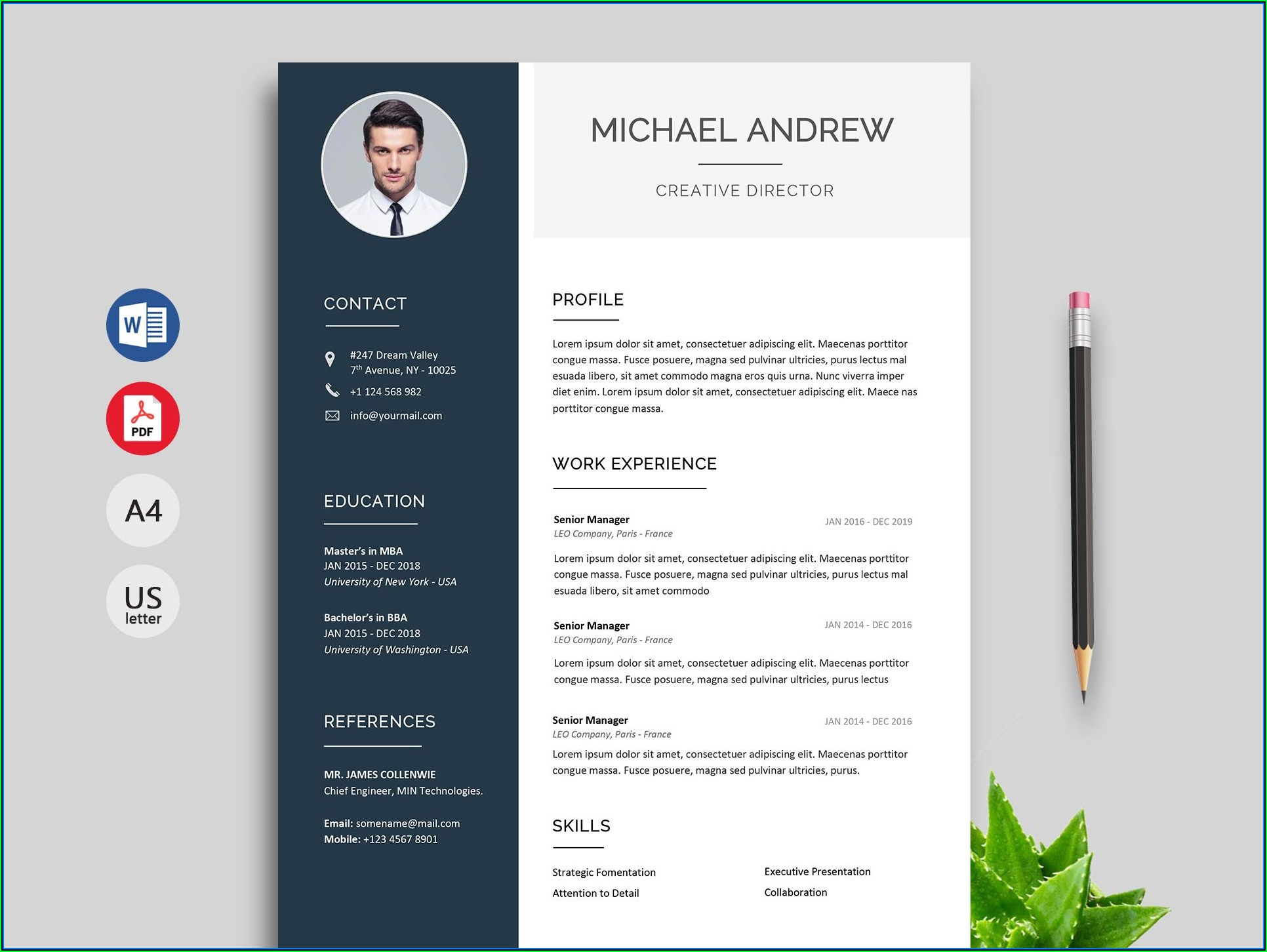 Free Executive Resume Templates 2019