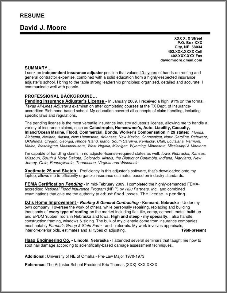 Insurance Adjuster Resume Template