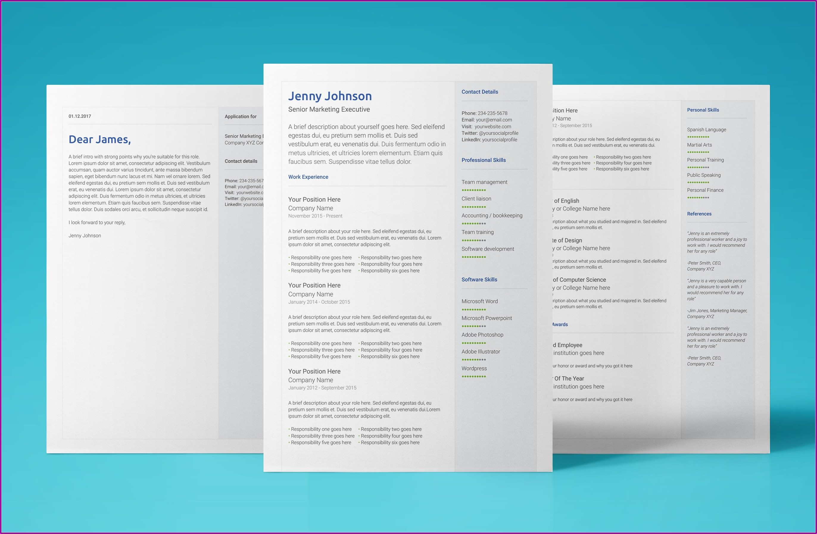 Modern Professional Cv Template Free Download