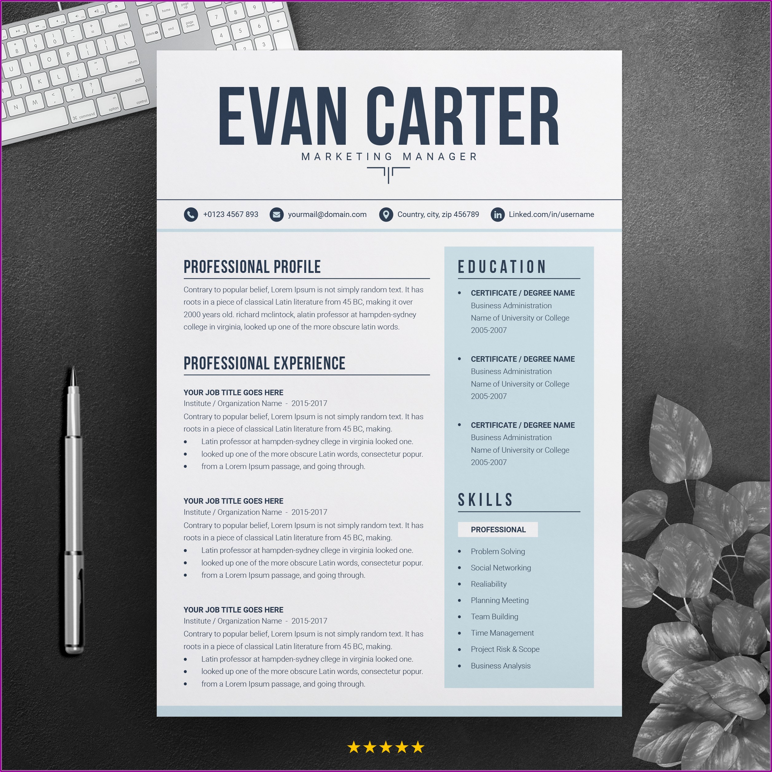 Modern Professional Resume Templates Free