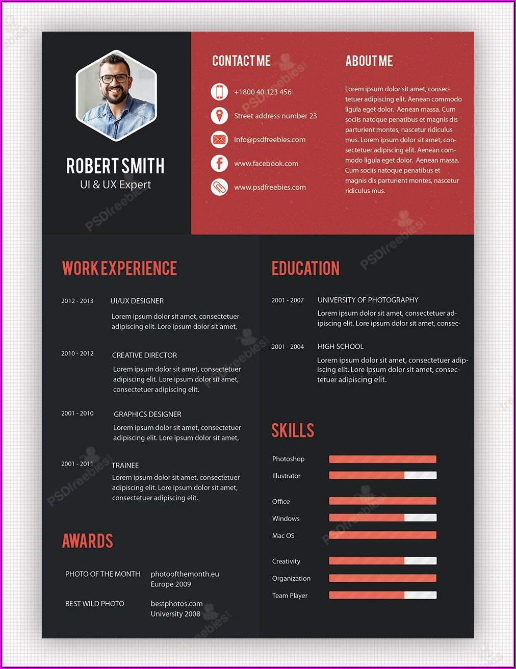 Professional Creative Resume Templates