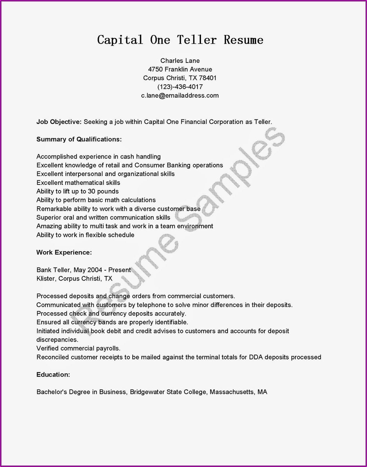 Professional Nursing Resume Services