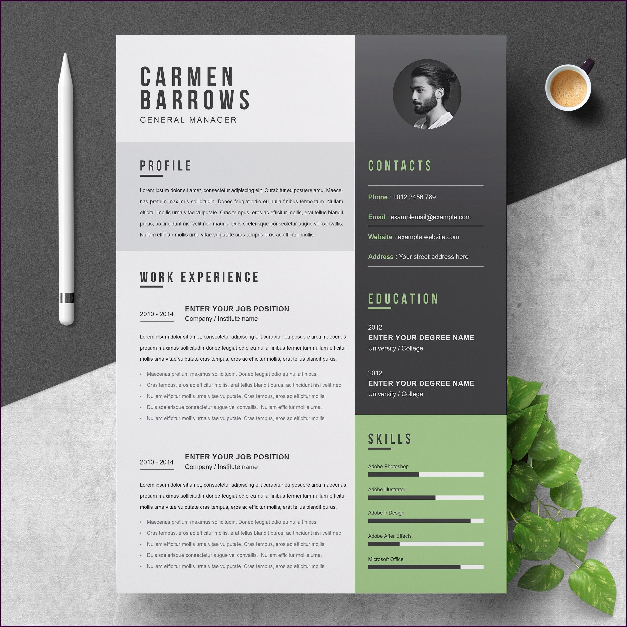 Professional Resume Design Templates