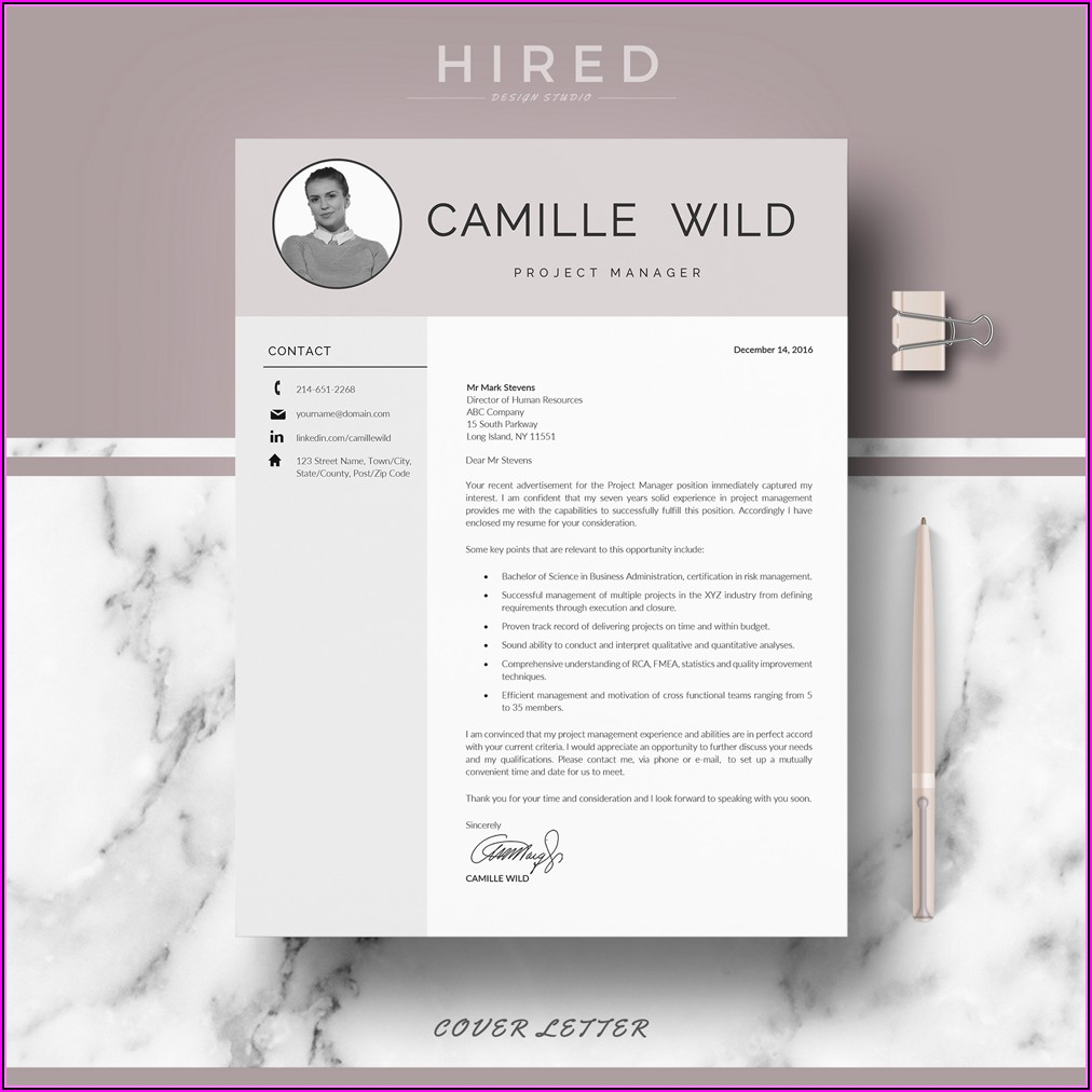 Professional Sales Manager Resume Template