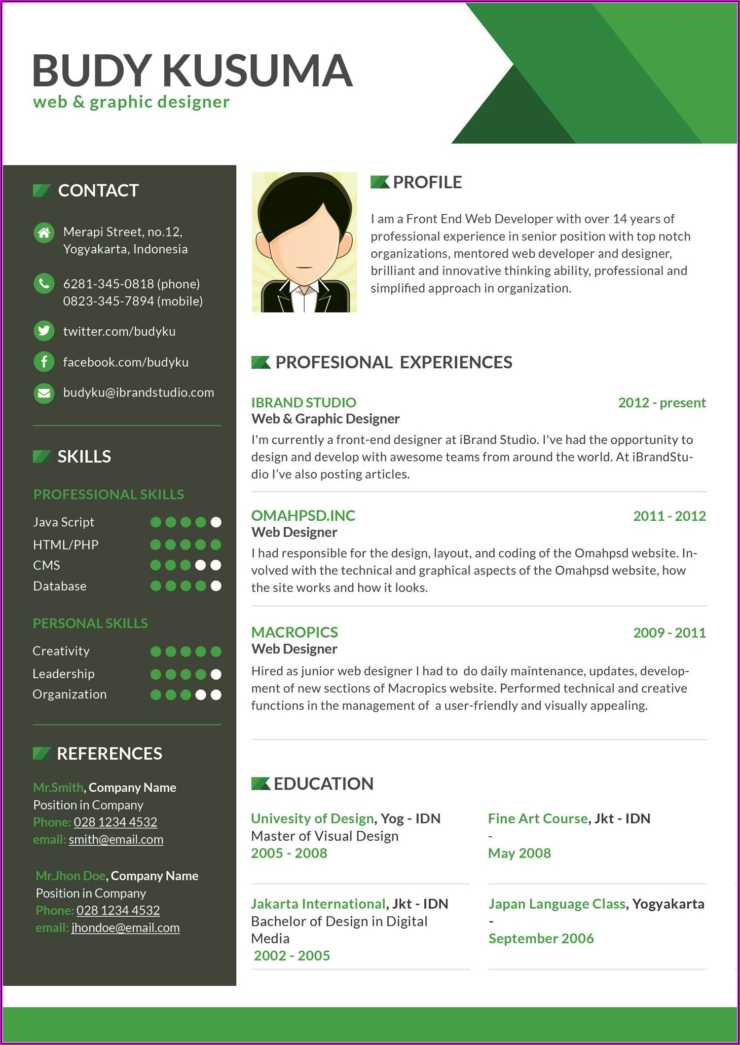 Professional Software Developer Resume Examples