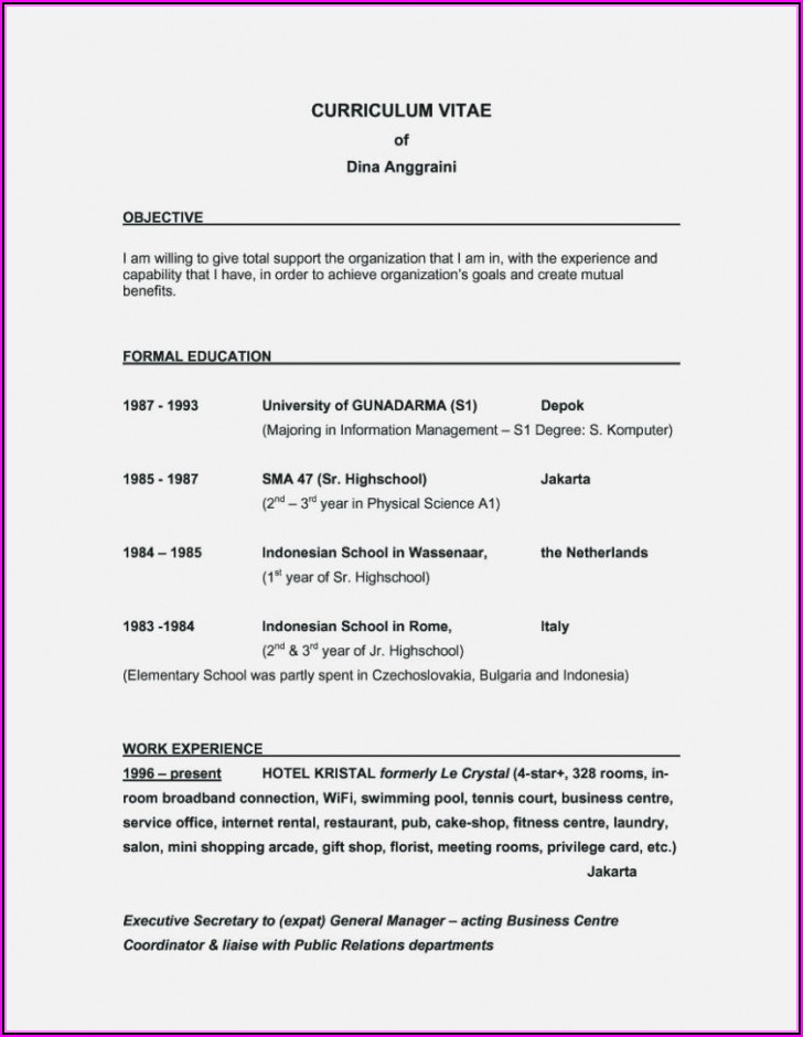 Resume Builder Objective Examples