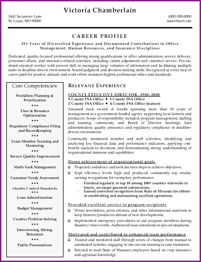 Resume Examples Executive Director