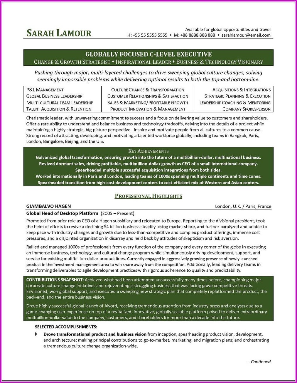 Resume Examples Executive Level