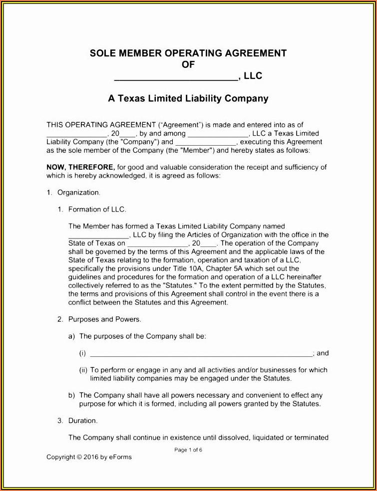 Short Form Delaware Llc Operating Agreement