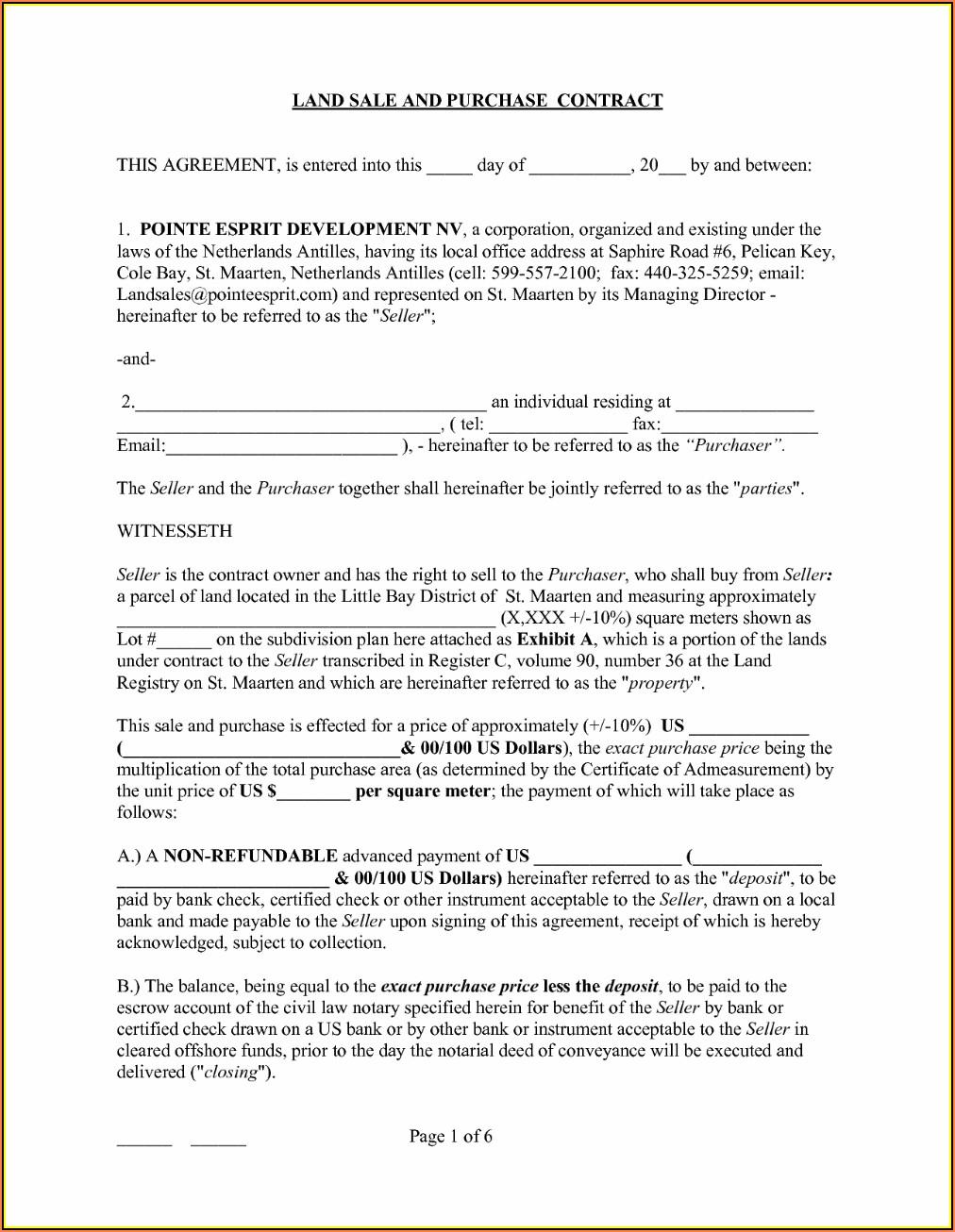 Virginia Prenuptial Agreement Template