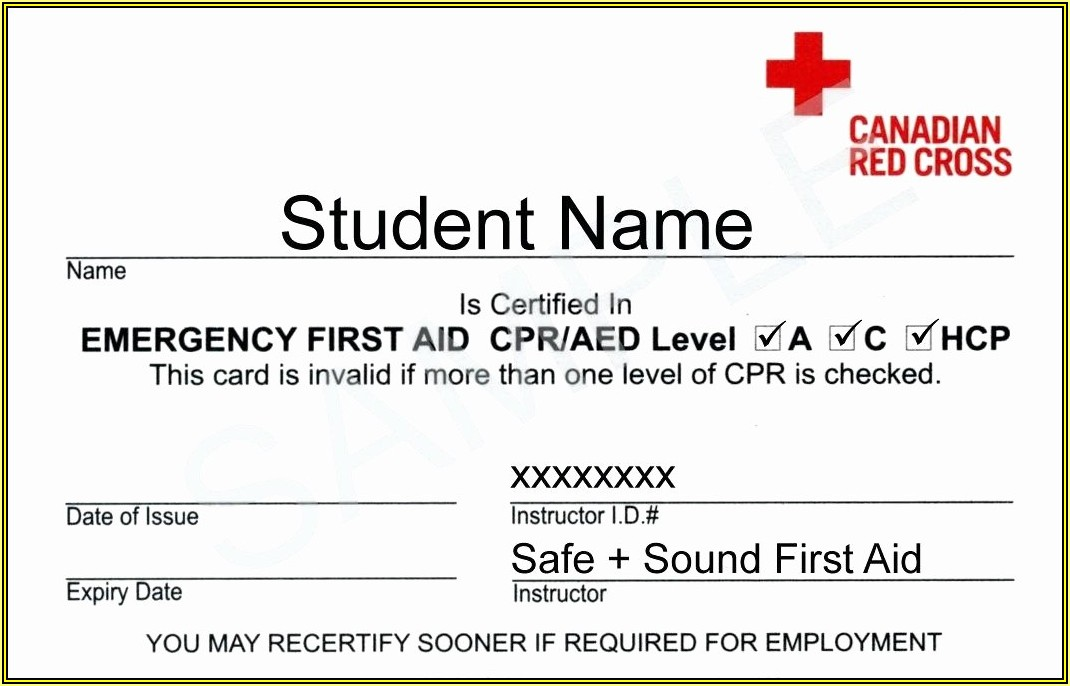 Free Cpr Card Template