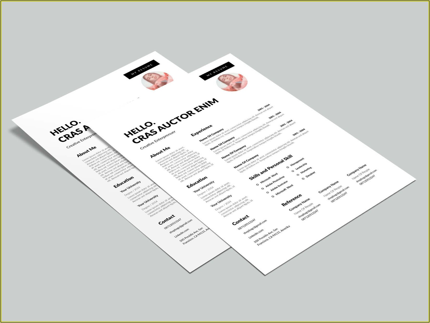 Free Dynamic Resume Templates