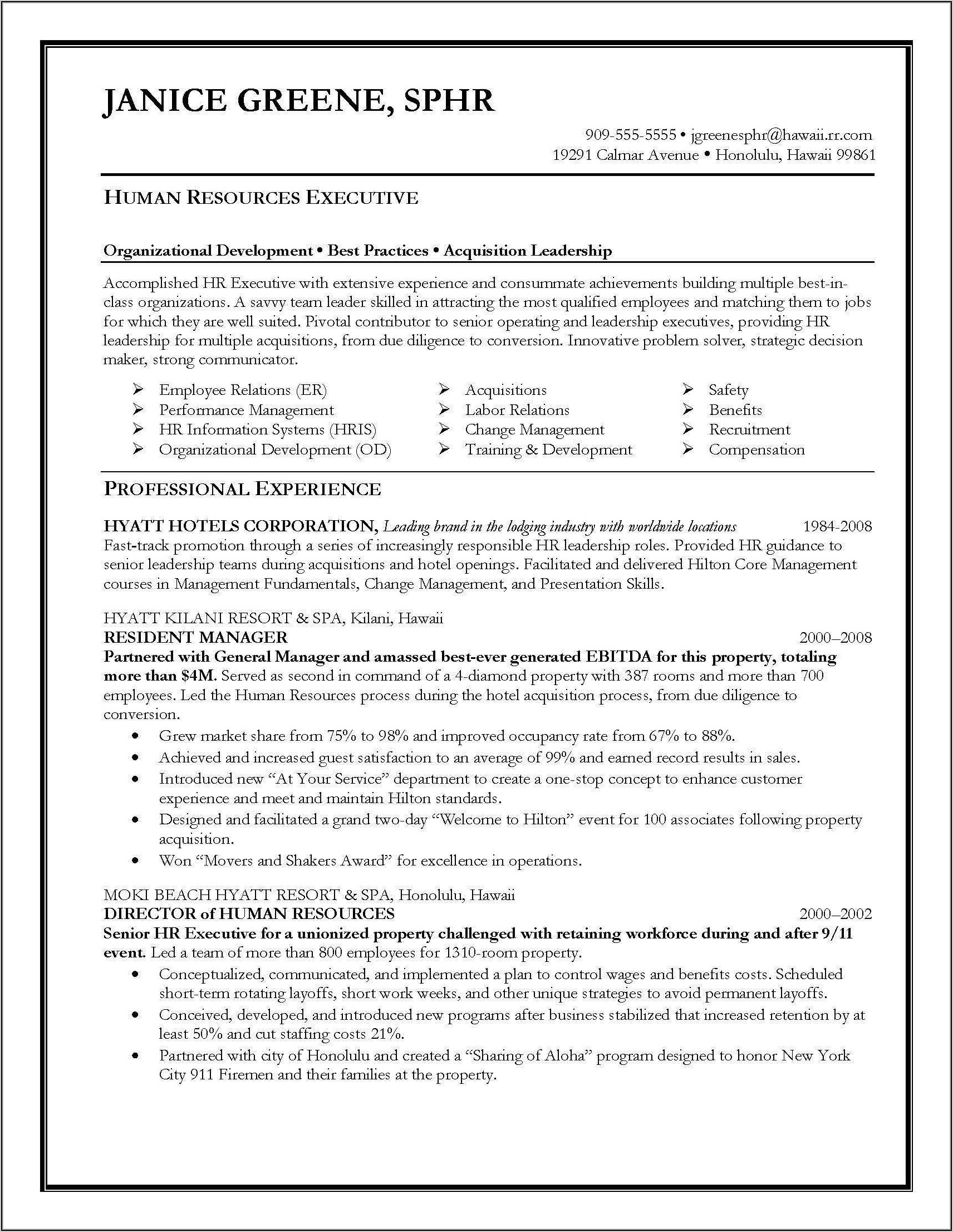 Resume Templates Executive