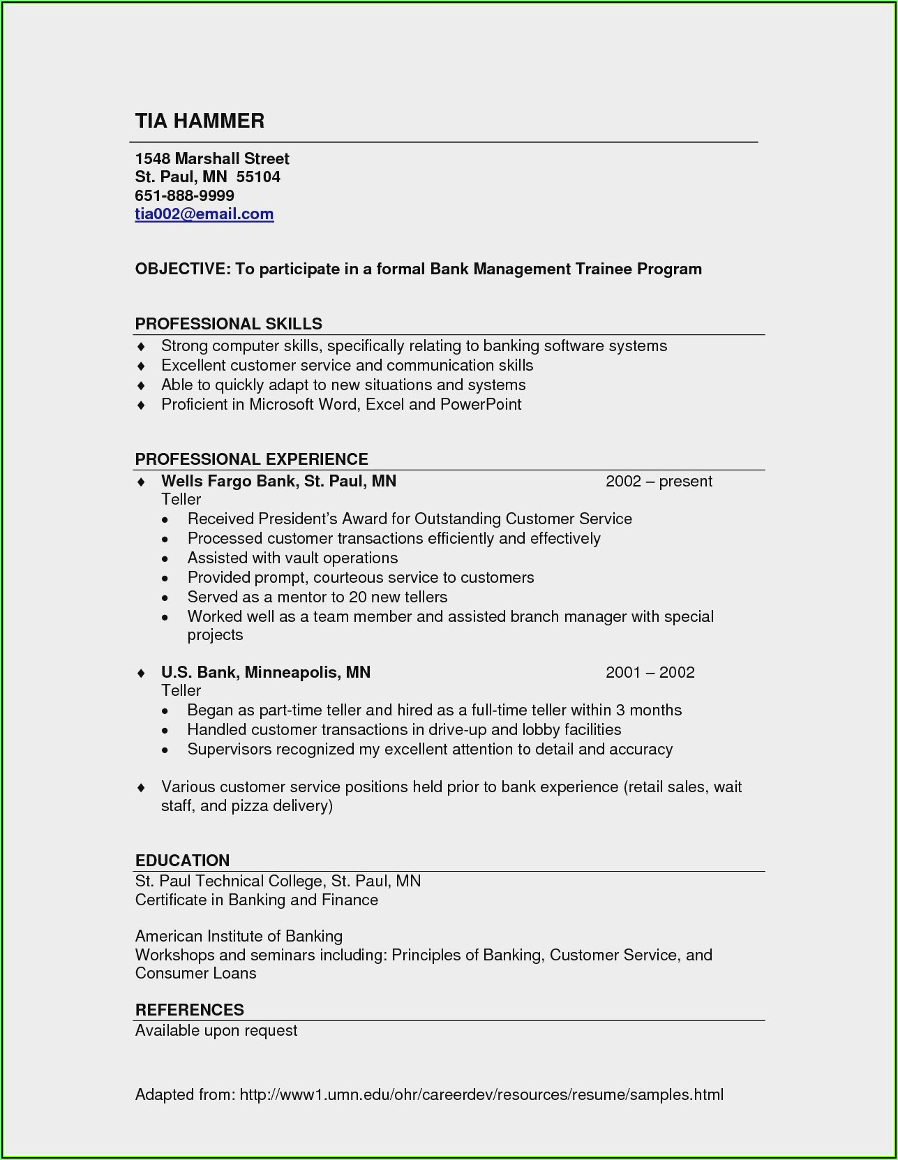 Resume Templates For Experienced Banking Professionals