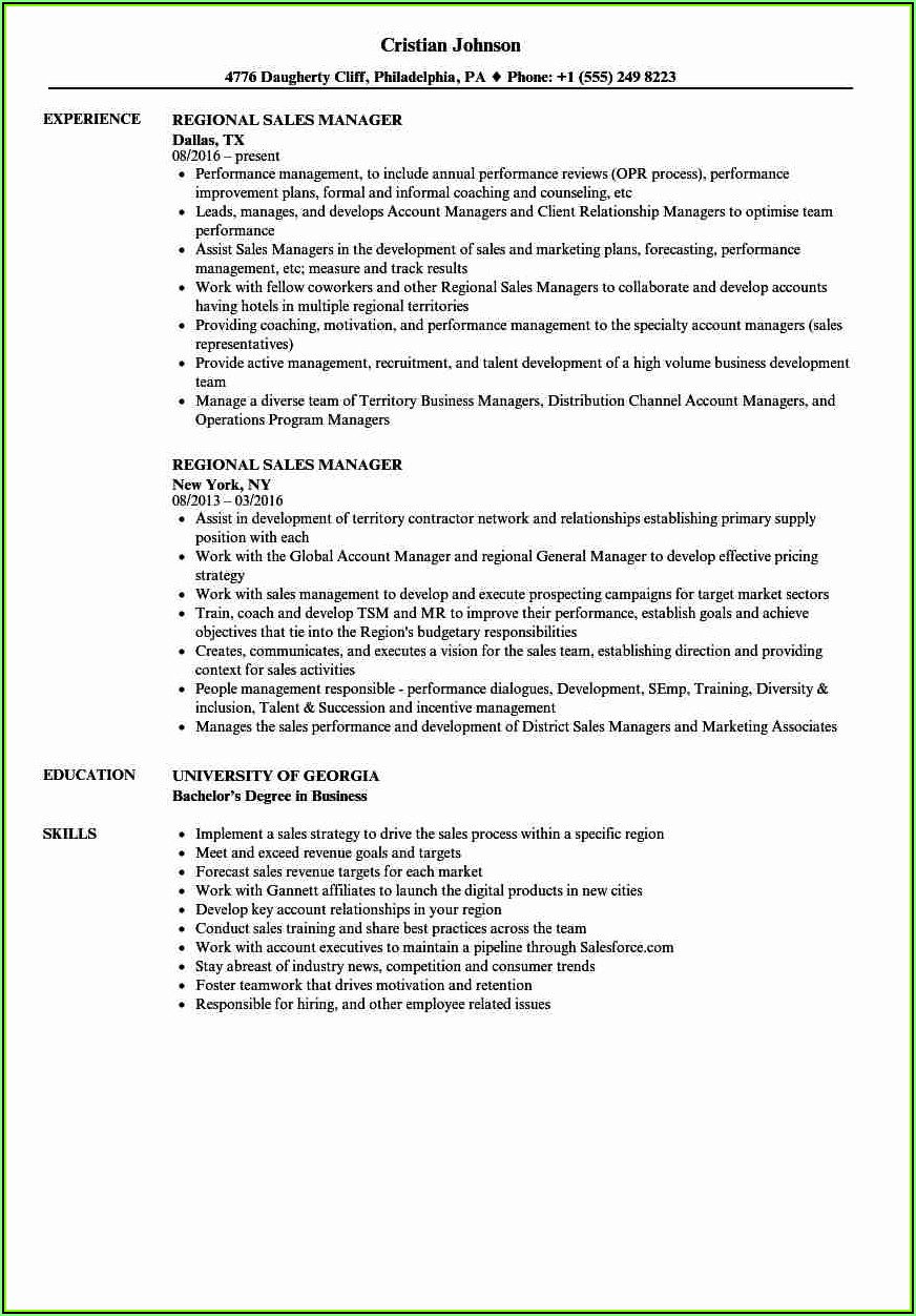 Sales Manager Cv Templates