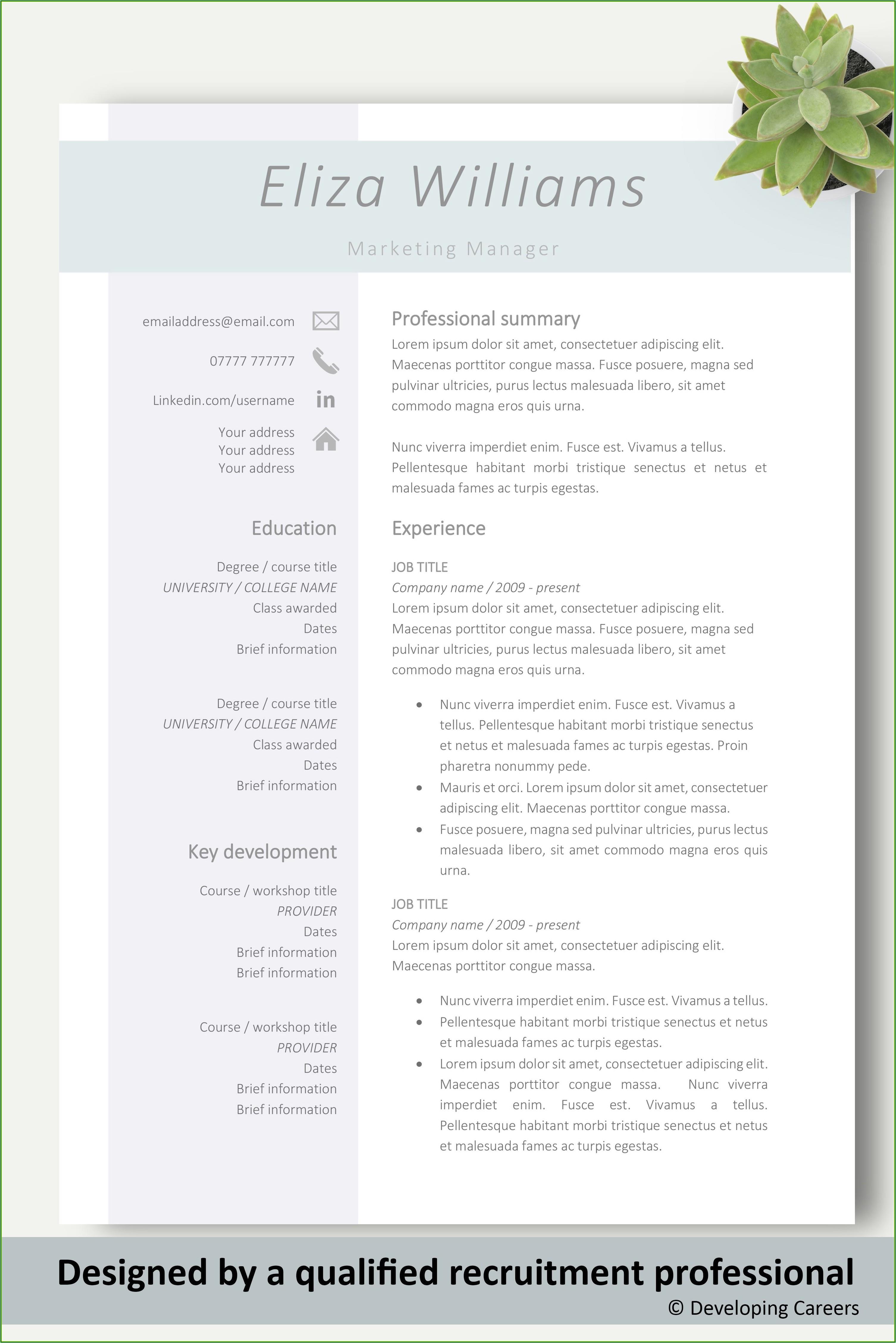 Sales Resume Template Word
