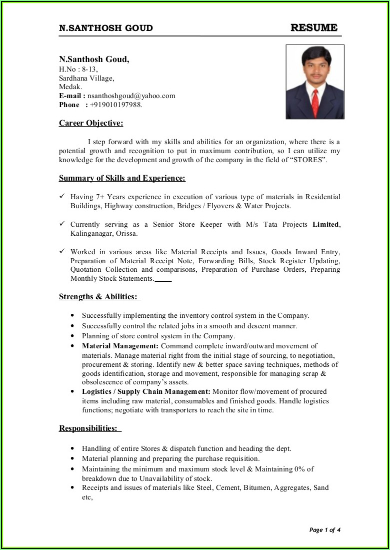 Sample Resume For Job Free Download