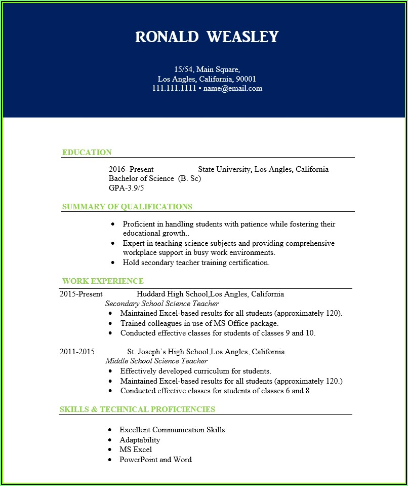 Sample Resume For Teachers In India Word Format Download