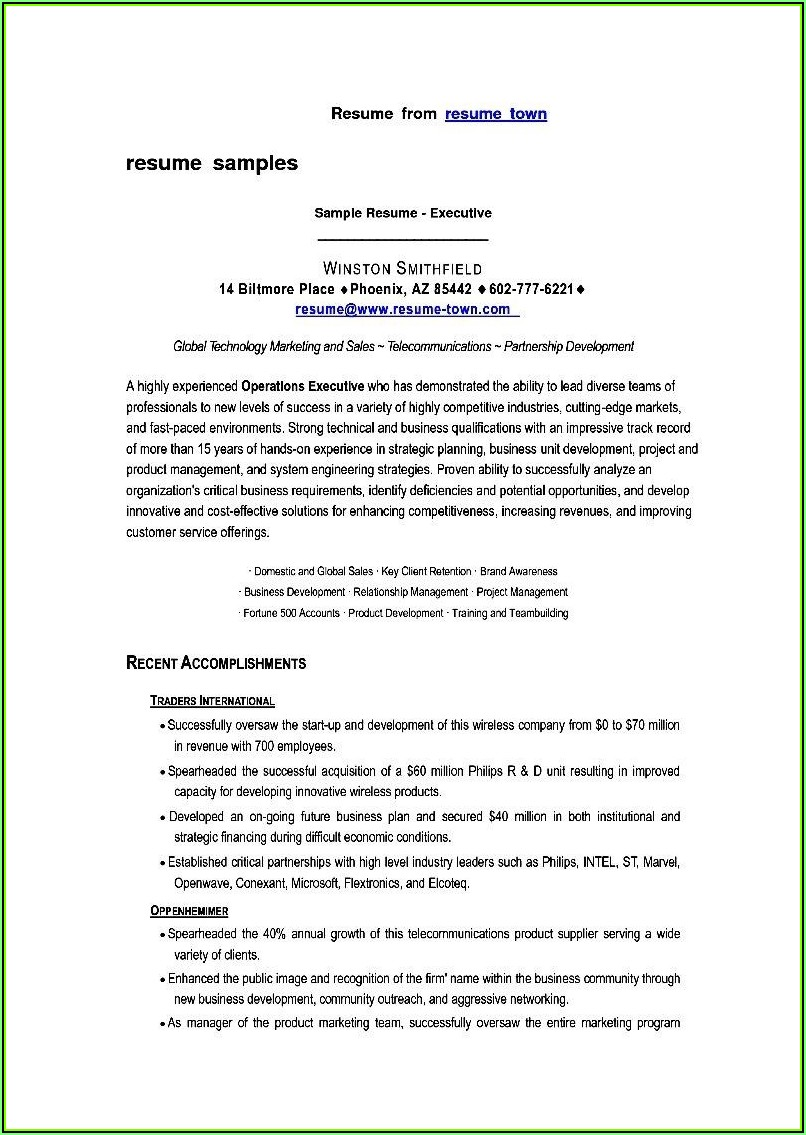 Sample Resume Format Sales Executive
