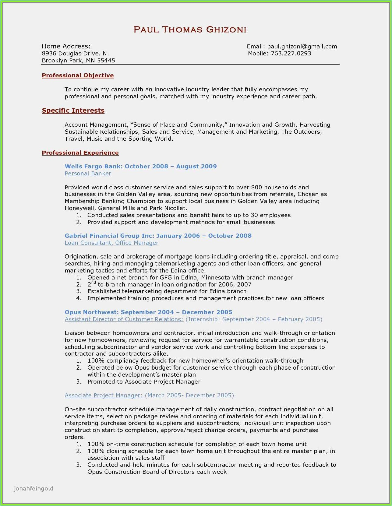Sample Resume Of Project Sales Manager