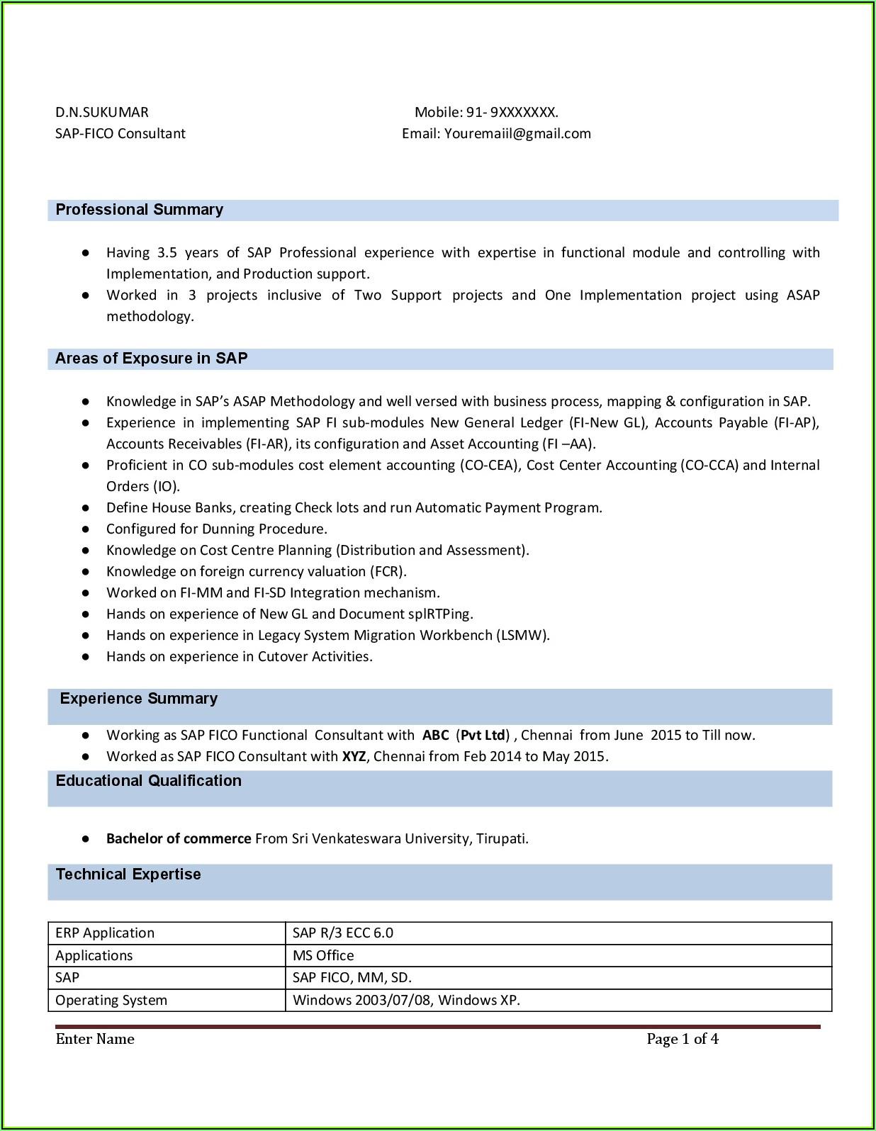 Sap End User Resume Format