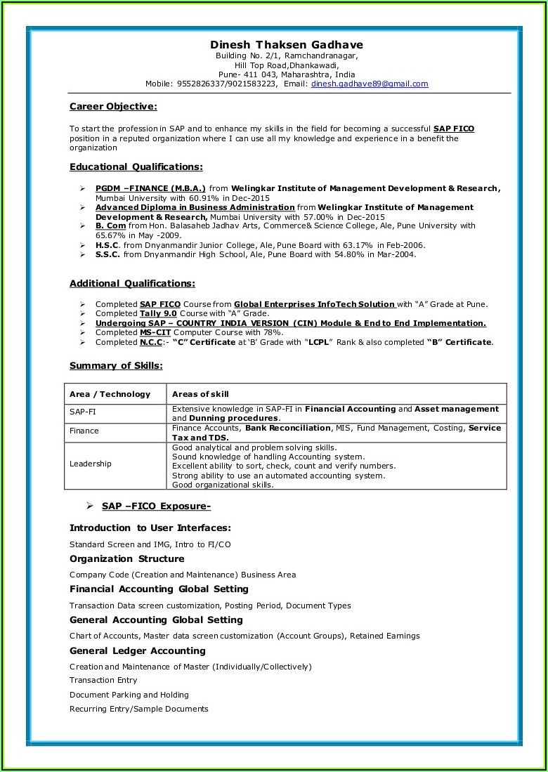 Sap Mm End User Resume Sample