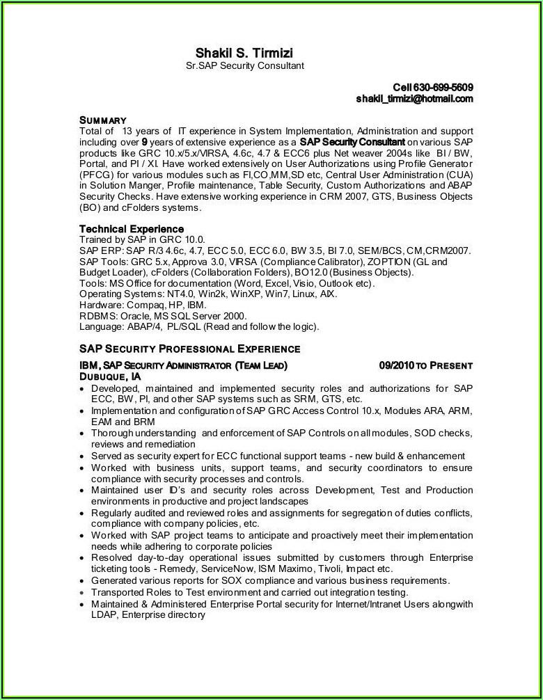 Sap Security Consultant Resume