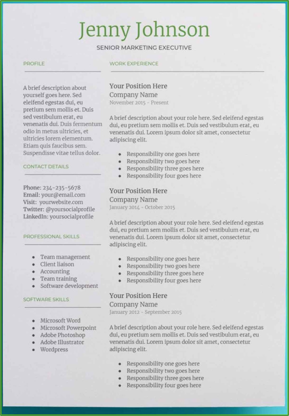 Skills Based Resume Template Google Docs