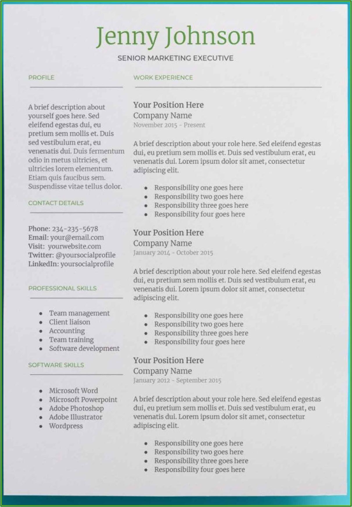 Skills Based Resume Template Google Docs