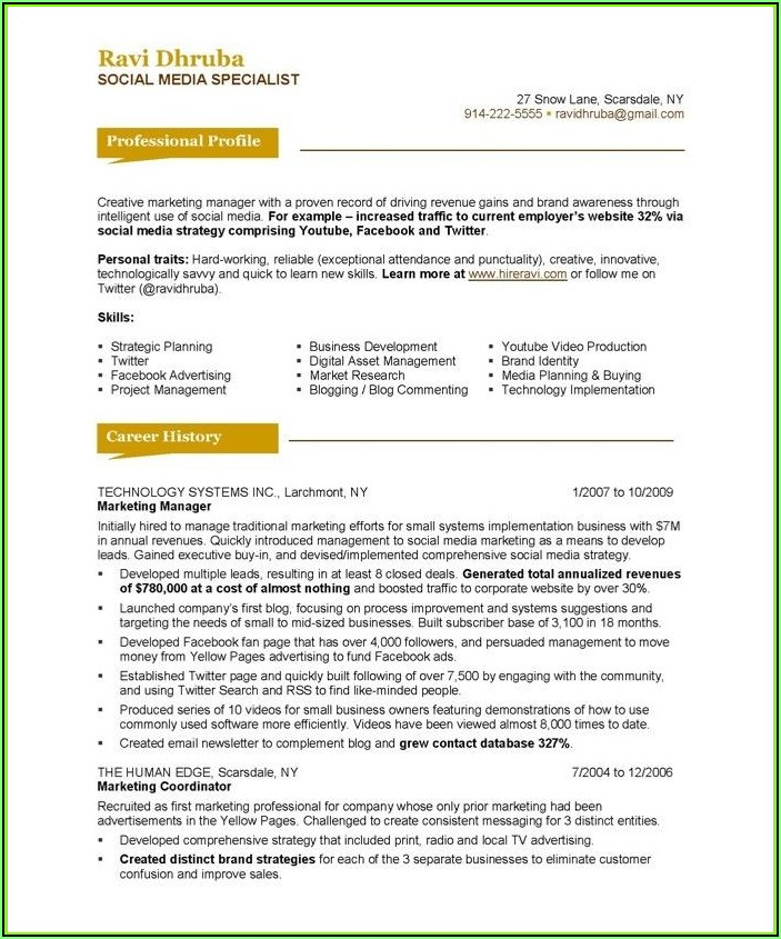 Software Engineer Professional Resume Template