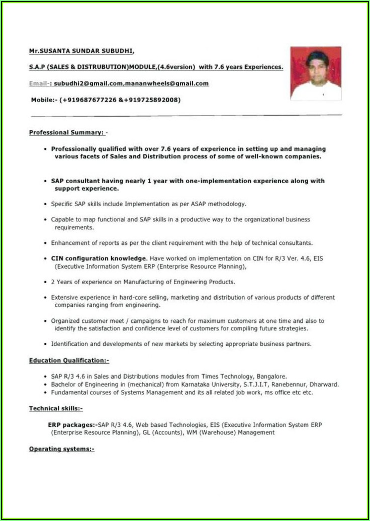Software Professional Resume Format