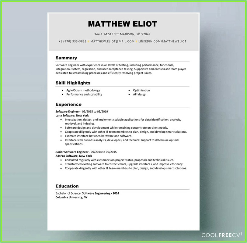 Software Professional Resume Samples Doc