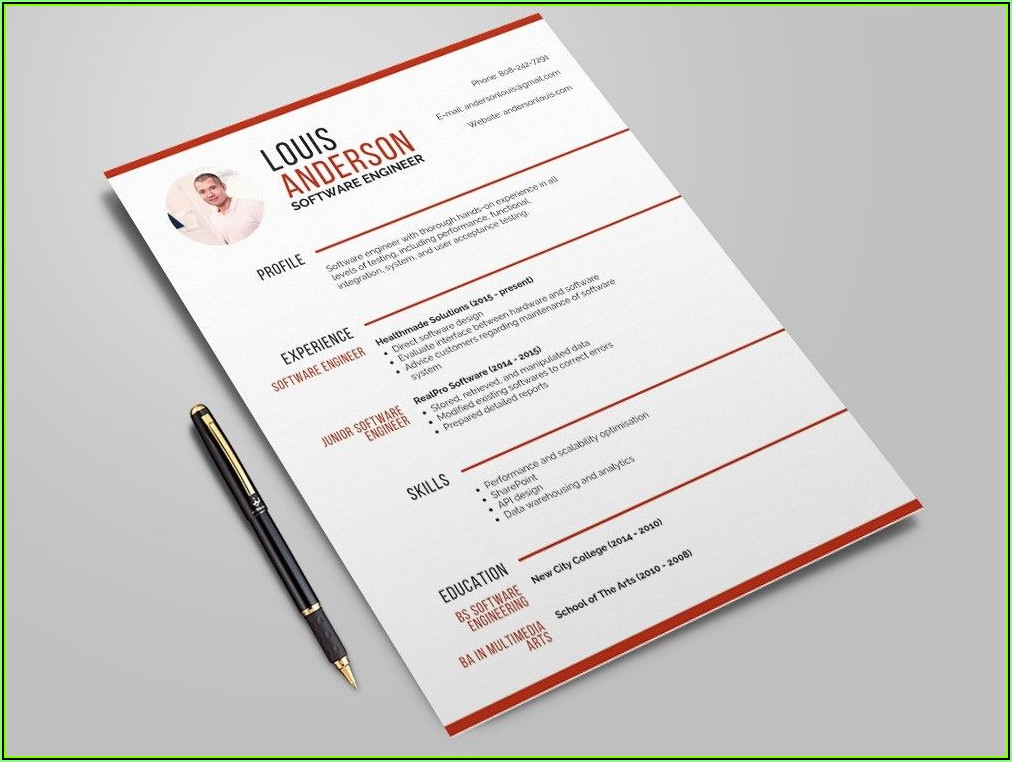 Software Professional Resume Template