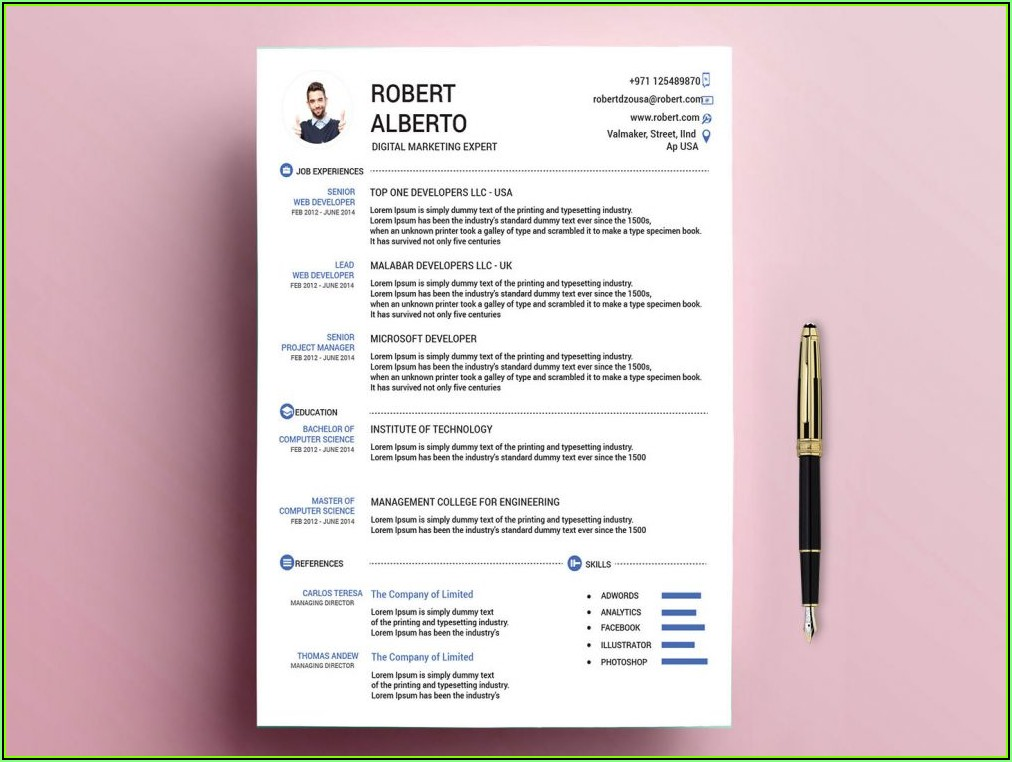 Standard Resume Template Word Free Download