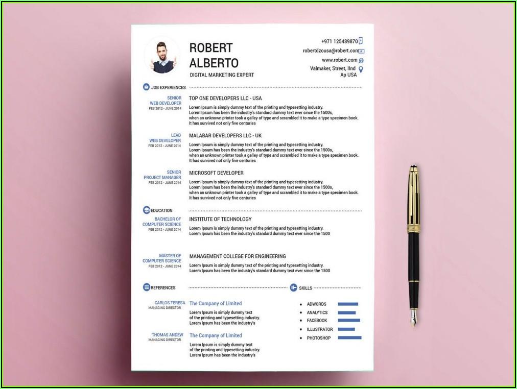Standard Resume Template Word Free Download