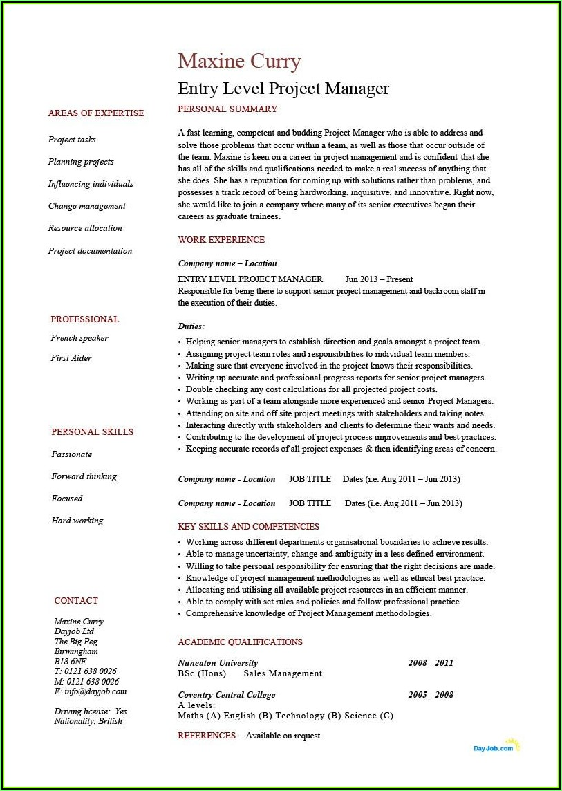 Template Resume Project Manager