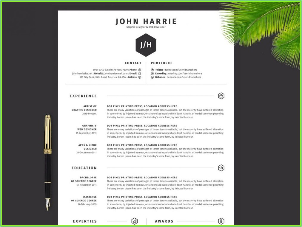 Top Resume Templates Download