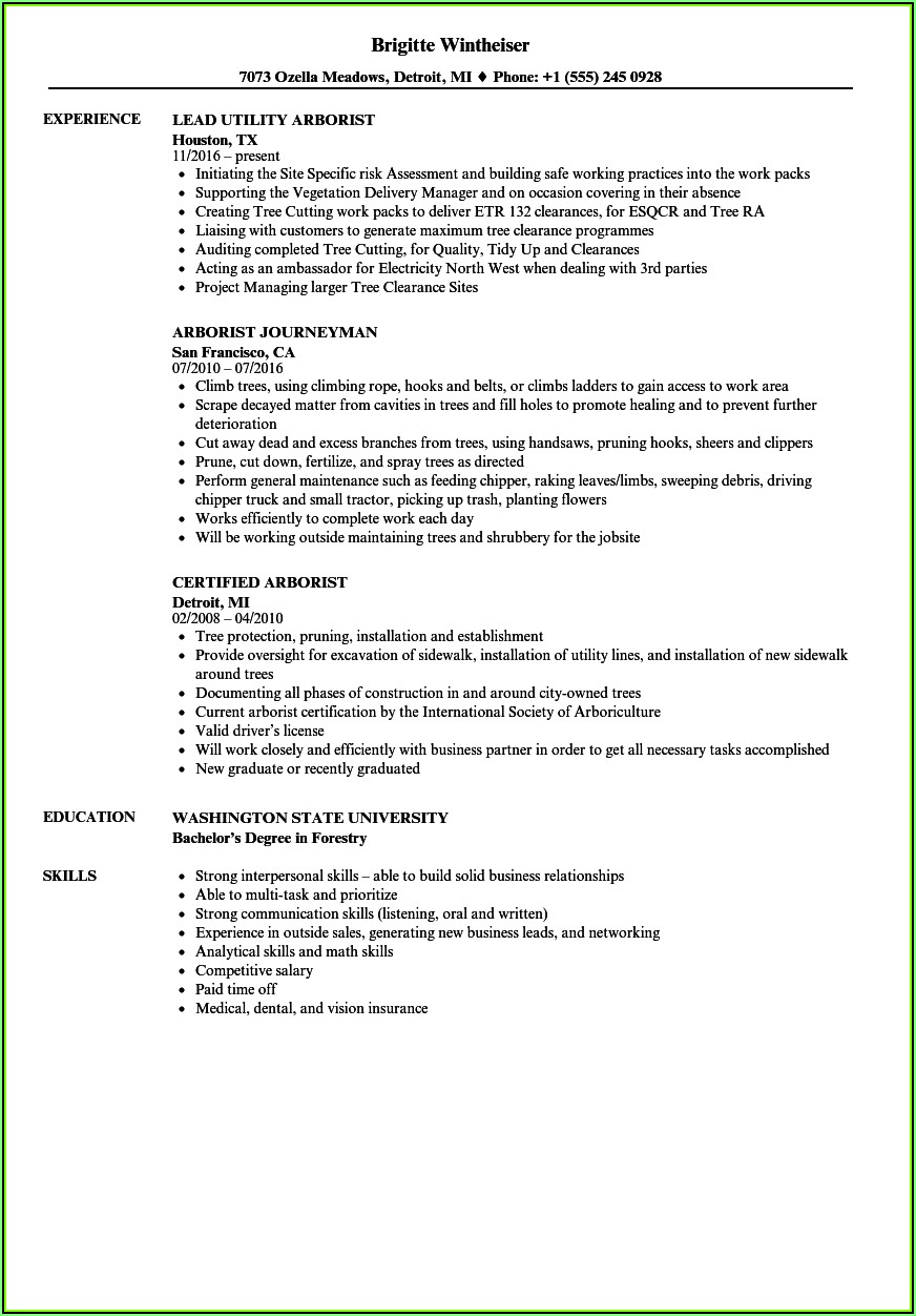 Tree Trimmer Resume Objective Resume Resume Examples