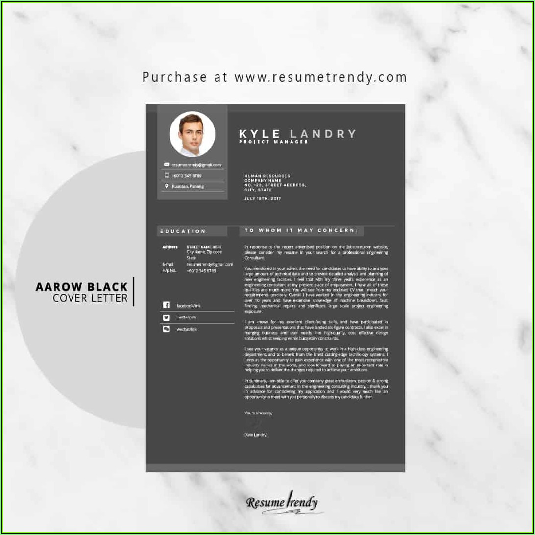 Updated Resume Templates 2019