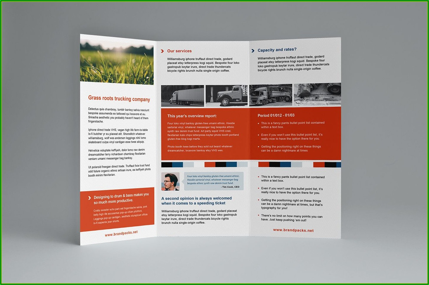 3 Fold Brochure Template Illustrator Free