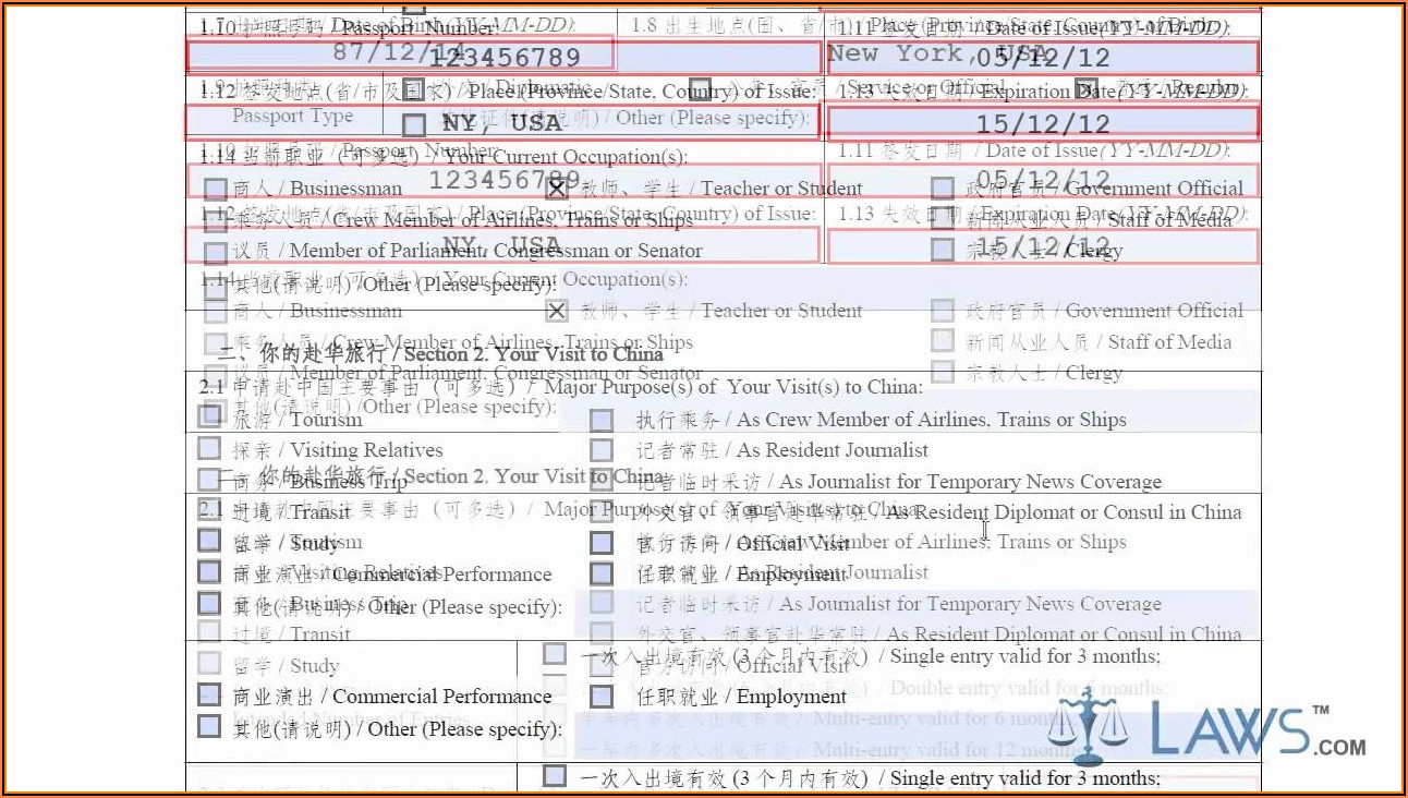 Fillable Chinese Visa Application Form