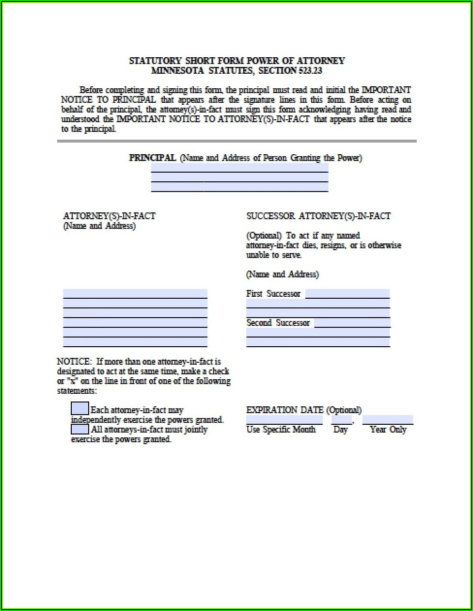 Power Of Attorney Template Minnesota
