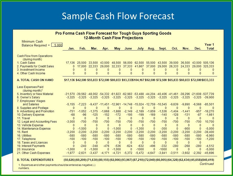 Sample Pro Forma Cash Flow Projection