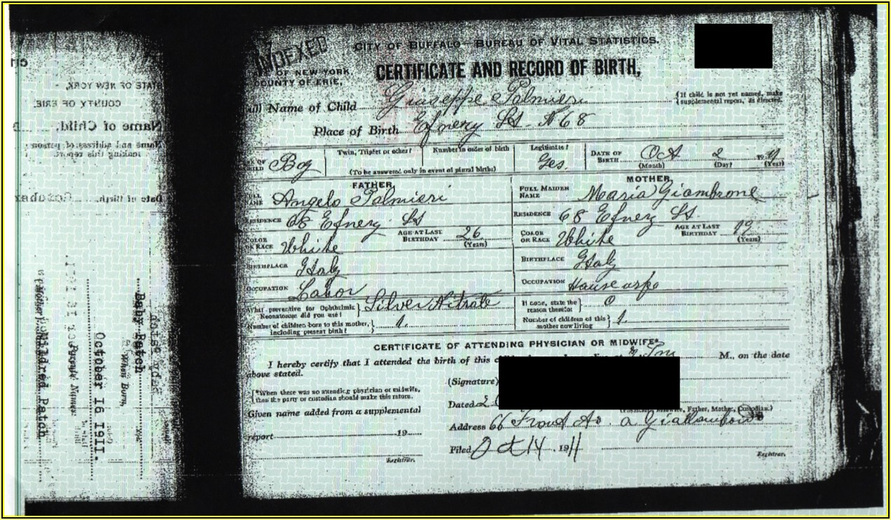 Birth Certificate Replacement Form Nyc