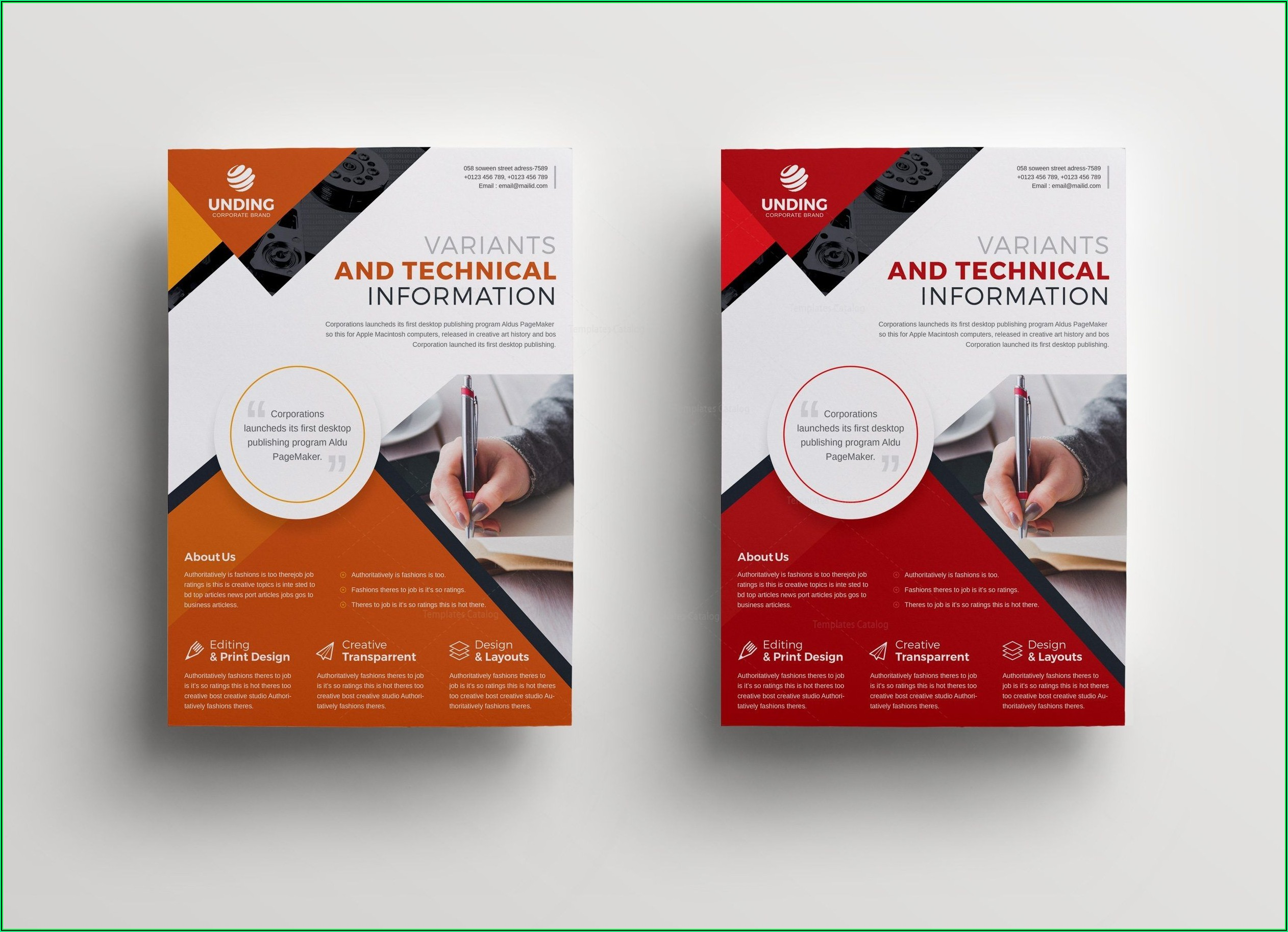 Professional Flyer Design Templates