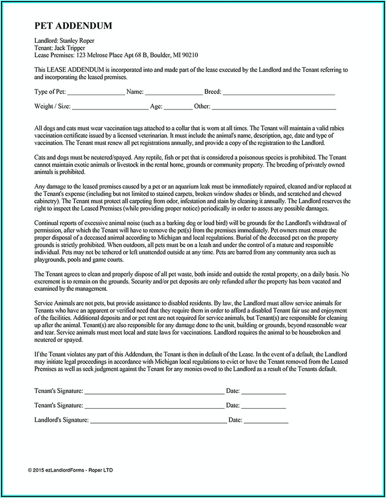 Rental Agreement Forms California