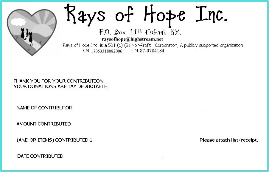 Sample Non Profit Donation Receipt Form