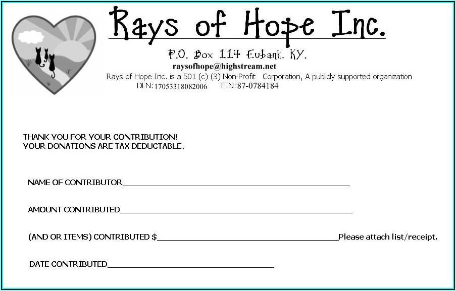 Sample Non Profit Donation Receipt Form