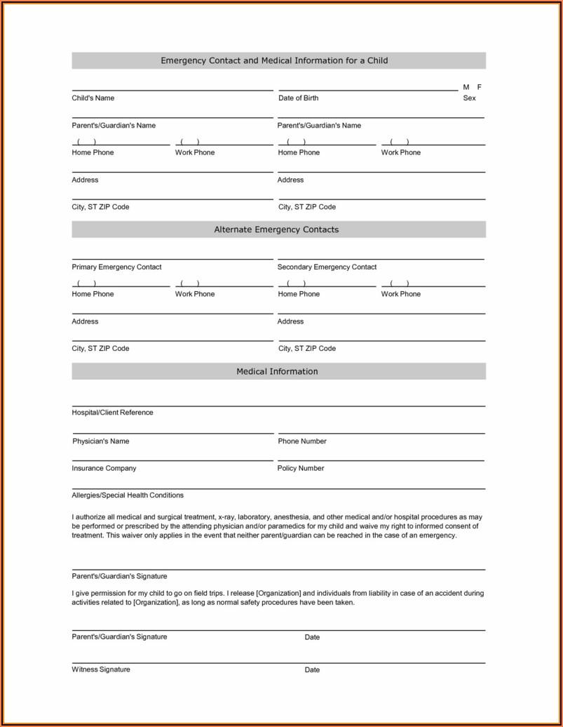 Temporary Guardianship Form Idaho