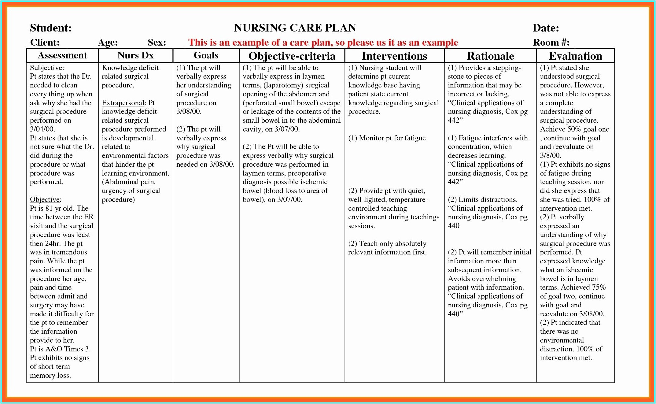 Elderly Care Plan Example